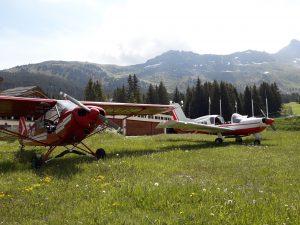 Piloter un piper cub ou un rallye 180